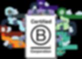 B Corp Diagram.png