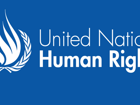 UN Statement on Forced Organ Harvesting in China