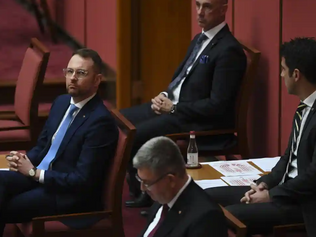 Liberal senator says Coalition MPs shifting to support Indigenous voice to parliament