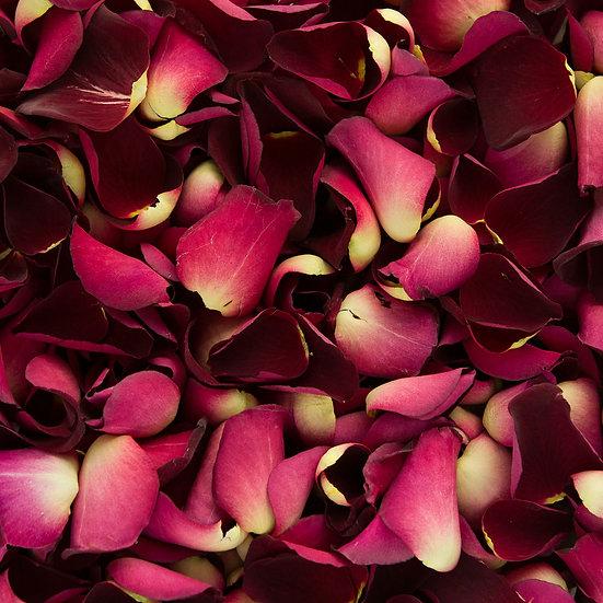 Óleo de Rosas Energizadas Amor