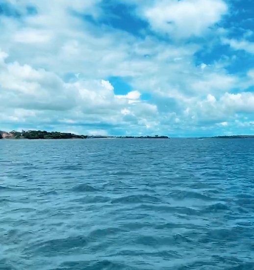 Mergulho no Tikun (Semanal | 4 x mês)