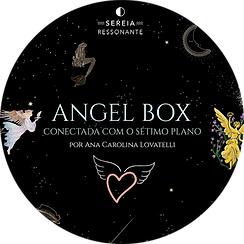 Angel Box.png