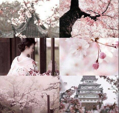 Caixa Arquetípica Hanami - Florada da Sakura - Boas Novas e Amor