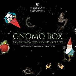 Gnomo Box.png