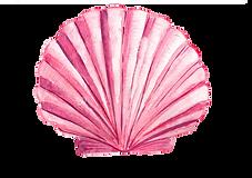 kisspng-drawing-seashell-watercolor-pain