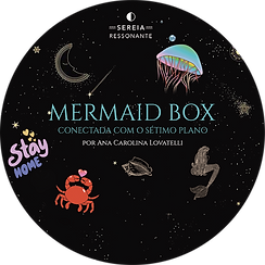 mermaid box.png