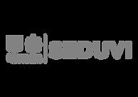 logo-seduvi.png