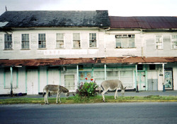 Georgetown, Guyana South America 6