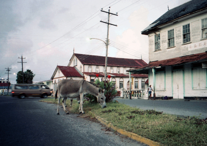 Georgetown, Guyana South America 7