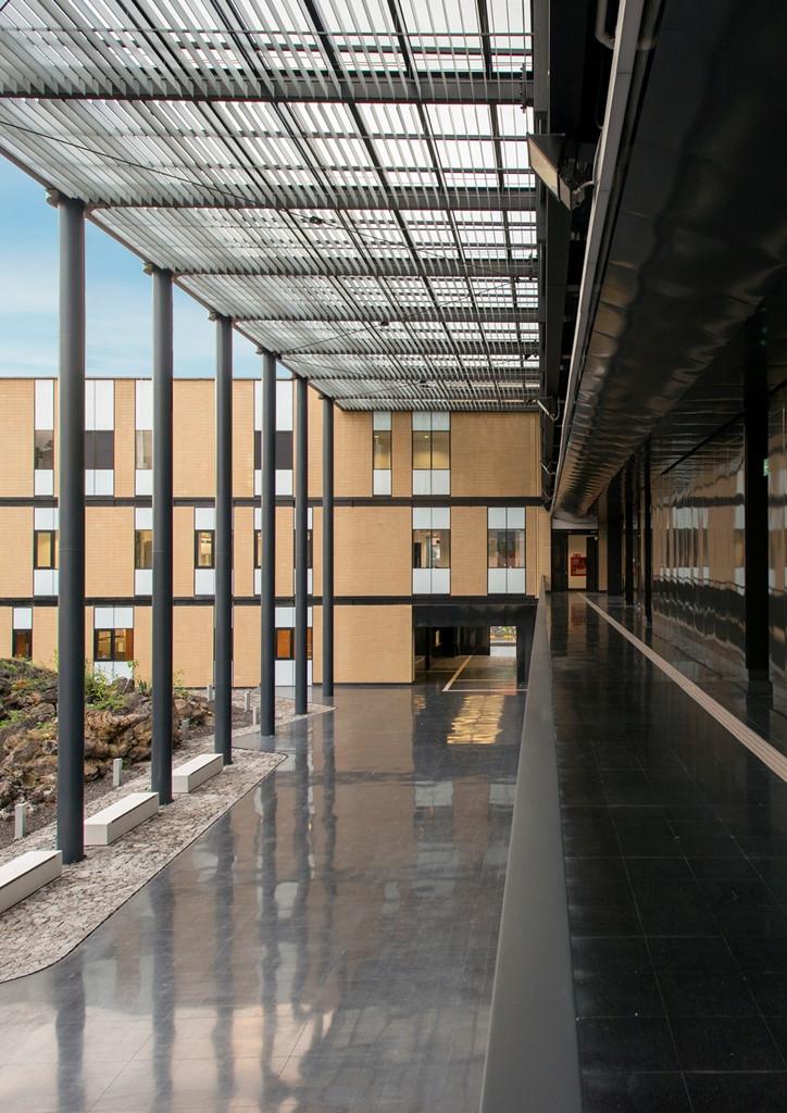 Edificio-para-la-Licenciatura-en-Ciencia