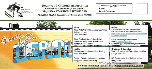 DCA COVID Postcard mailed.jpg