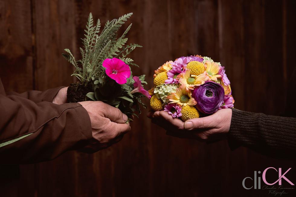 Floristenfoto-Blumenfoto-Gärtnereifoto-F