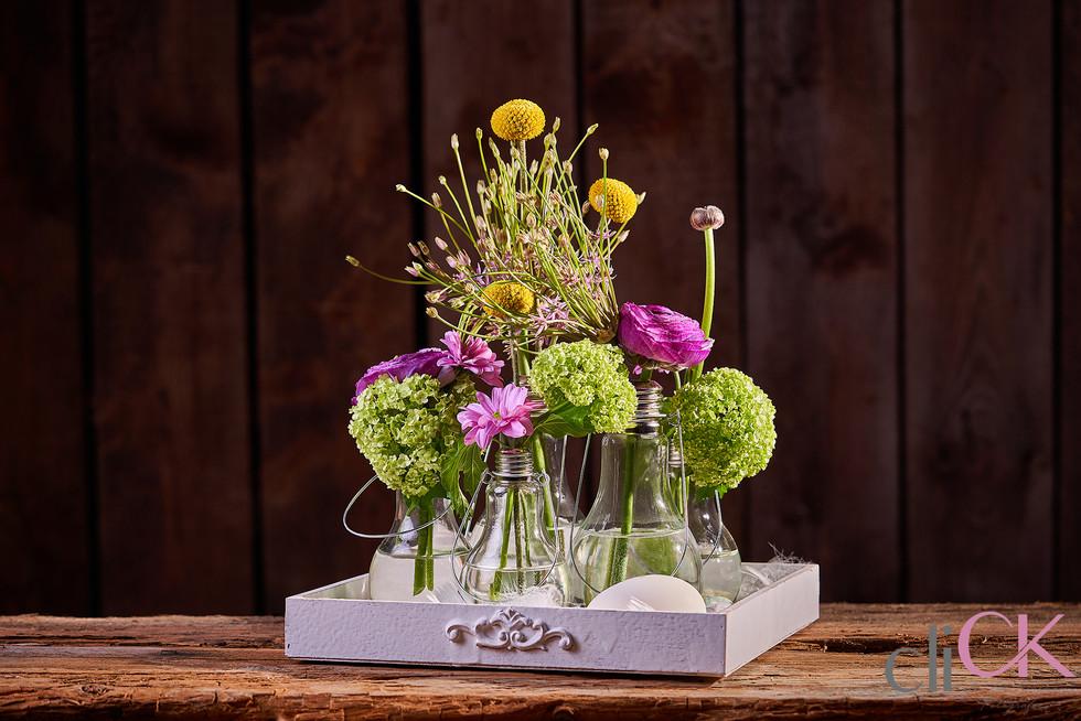 Fotograf-Stuhr-Fotoshooting-Blumen-Fotos