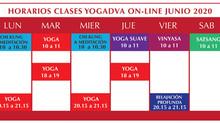 CLASES ONLINE CADA DIA