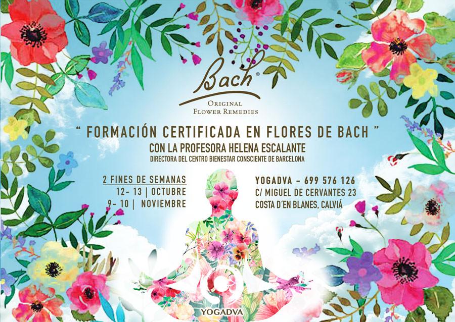 Curso de Flores de Bach Yogadva