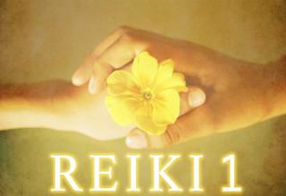 Formación Reiki Usui Nivel 1