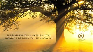 TALLER DESPERTAR DE LA ENERGIA VITAL: 2 DE JULIO