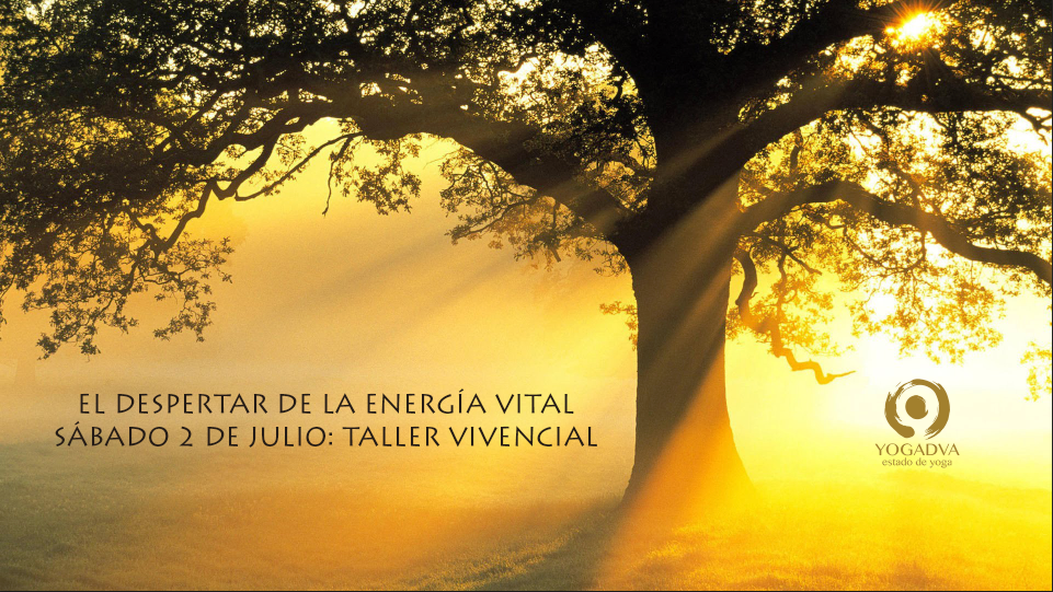 TALLER PARA EL DESPERTAR DE LA ENERGIA VITAL 2 DE JULIO YOGADVA
