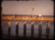 Screen Shot 2019-01-20 at 4.02.43 PM.png