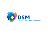 Website logos_DSM-33.png