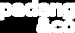 padang&co logo_white.png