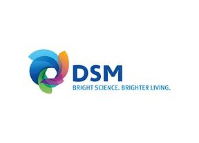 Website logos_DSM-06.png
