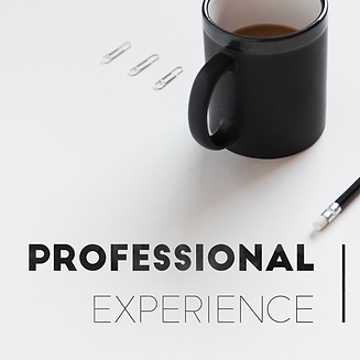 Professional experience, coffee mug, pen