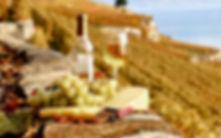 Гастрономические экскурсии в Апулии, гид в апулии, бари