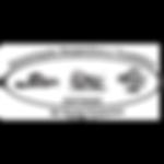 Logo Site Adtrisc.png