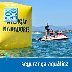 Conheça - Seguranã Aquática.png