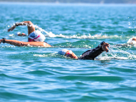 5 Travessias espetaculares para você nadar no Brasil