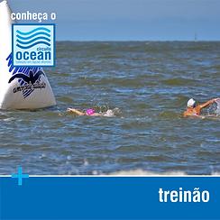 Conheça - Treinão.png