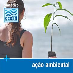 Conheça - Ação Ambiental.png