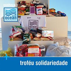 Conheça - Troféu Solidariedade.png