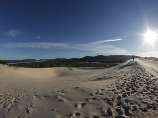 IMG_6170-Florianopolis-Meio-Ambiente-Dun