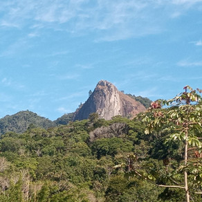 Trilhas para correr #2 - Pico da Pedra Branca, São José/SC