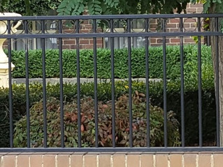 Gates & Fencing by Metroworks