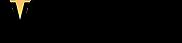 VTC Super Small logo for vendini.png