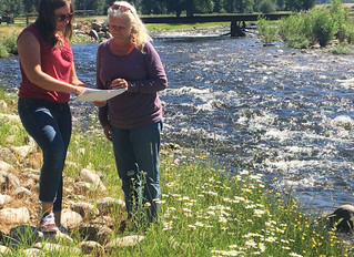 East Fork effort is experiential education through riparian restoration