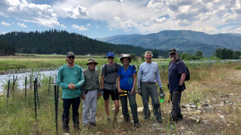 Watershed Enhancement Team