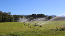 Irrigation in the Bitterroot Tour