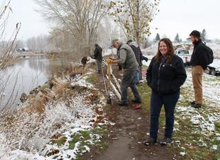 Volunteers dive in to restore stream bank