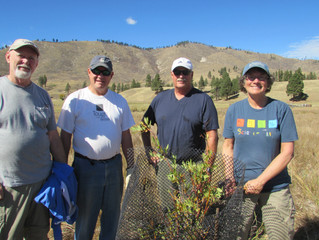 Bitterroot Water Forum works to protect tributaries