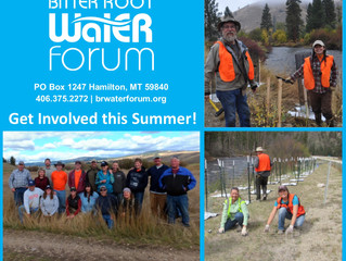 Join Our Watershed Enhancement Team!