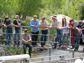 'Future irrigators' learn about valley irrigation