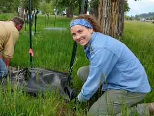 Volunteer Planting Days