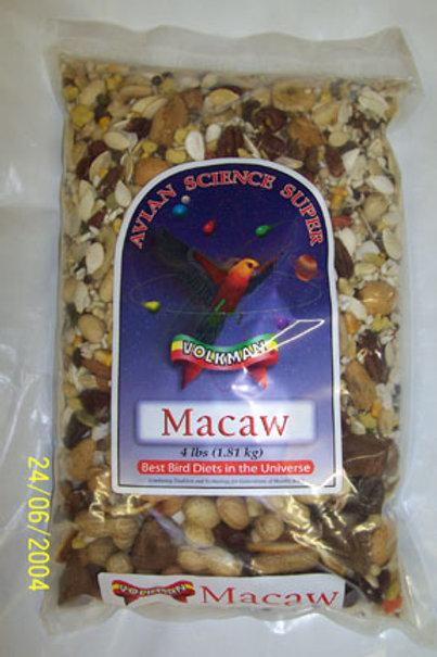 Super Macaw