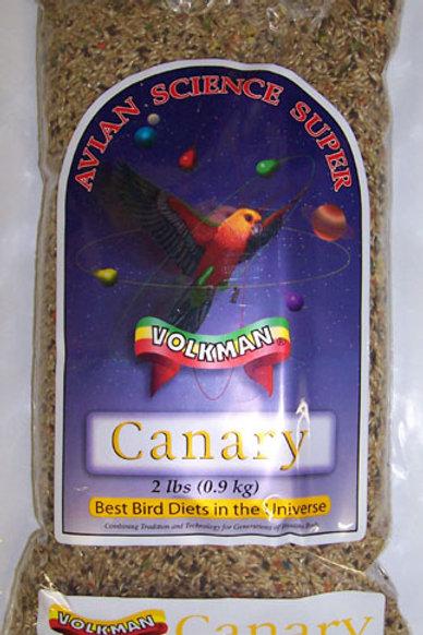 Volkman Canary