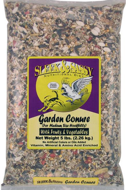 Garden Conure 4 lb.