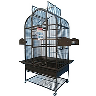 bird cages,parrot cages,wrought iron cages,Bird Hut exotic birds,Portland exotic birds,Parrots, toys, and supplies,conures,quakers,pet birds,pets,macaws,cockatoos,lovebirds,parakeets,amazons